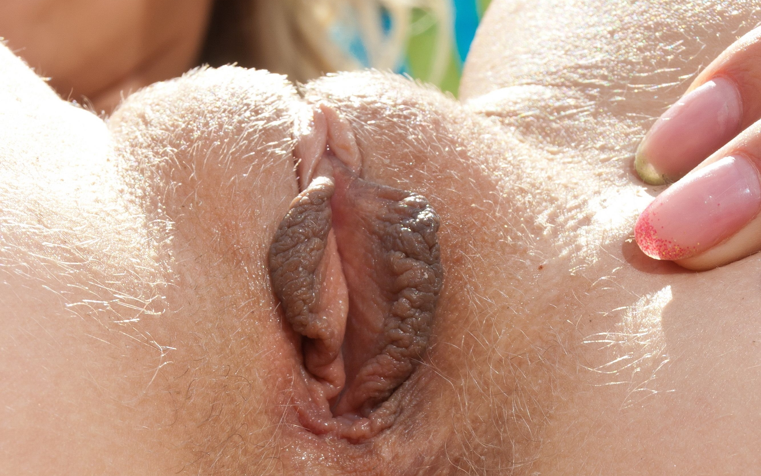 Close-up of pussy